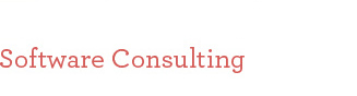 Software Consulting